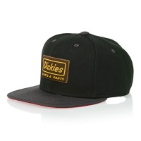 dickies_jamestown_cap_black_1