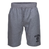 dickies_salton_city_short_grey_melange_1