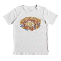 t_shirt_quiksilver_boys_phantasy_land_youth_gardenia_heather_1
