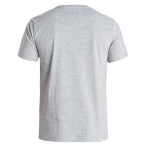 dc_shoes_t-shirt_3_two_1_heather_grey_2