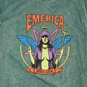 emerica_manere_aurum_wash_tee_green_2