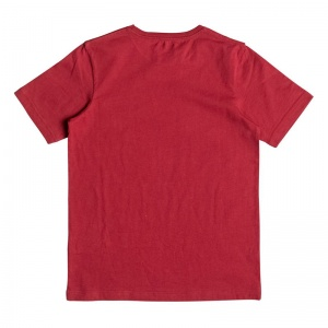 quiksilver_boys_t_shirt_classic_tee_youth_momentum_chili_pepper_2