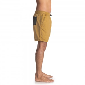 quiksilver_shorts_tioga_wood_thrush_3