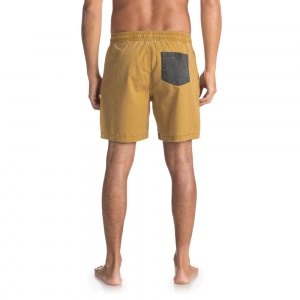 quiksilver_shorts_tioga_wood_thrush_4