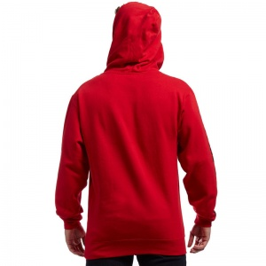 spitfire_hd_bighead_fill_sleeve_hoodie_red_youth_6