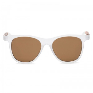 vans_elsby_shades_clear_frosted_1